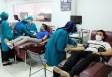 Donor plasma darah konvalesen