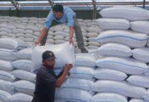 Pekerja mengangkut beras