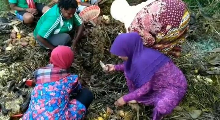 Tradisi Bakar Batu Komunitas Muslim